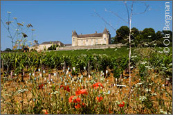 Château de Rully in Rully, Burgundy.