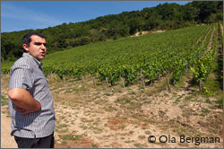 David George-Perpiña, Domaine George.