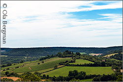 View from Vézelay.