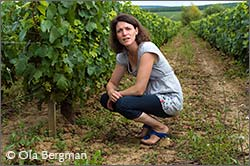 Stéphanie Michelet at Domaine Jean-Claude Courtault and Domaine Michelet.